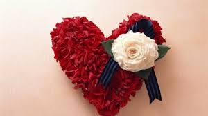 red rose wallpaper free