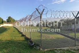Thamkc Royalty Free Stock Photos