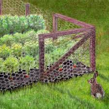 How To Keep Rabbits Out Of The Garden Rabbit Fences