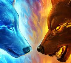 fire and ice wolf wallpapers top free
