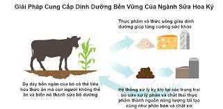 Bơ sữa Hoa Kỳ: Các biện pháp sáng tạo bảo vệ môi trường