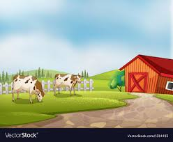 Two Cows At The Farm With A Barn And Fence Vector Image