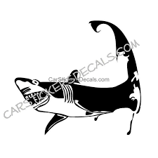 Cape Cod Shark Sticker Decal Car Stickers Decals