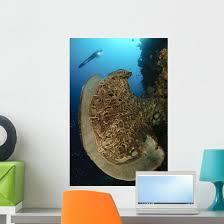 Salvador Dali Sponge With Wall Decal Design 10 Wallmonkeys Com