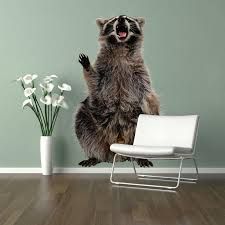 Shop Big Raccoon Full Color Wall Decal Sticker An 109 Frst Size 30 X47 Overstock 20687383