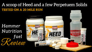 hammer nutrition s perpetuem solids