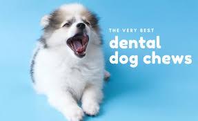 5 best dental chews for dogs 2020