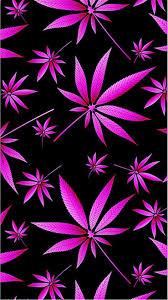 pink weed wallpapers top free pink