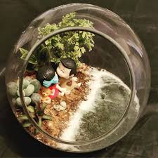 a mini garden with homescapes lbb
