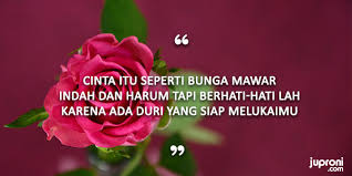 kata kata mutiara caption tentang bunga quotes