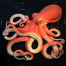 octopus wall decor pretty design