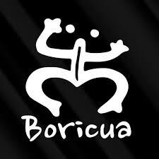 Amazon Com Crdesign Boricua Coqui Puerto Rico Taino Vinyl Decal White 5 Frog Car Suv Truck Auto Decal Sticker Boriken Borinquen Automotive