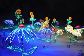 lights at green bay botanical garden