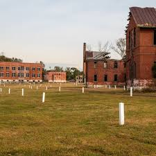 Hart Island will become publicly accessible parkland - Curbed NY