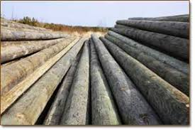 Trans Canada Wood Products Ltd Trans Canada Utility Pole Co Ltd Commercial Products