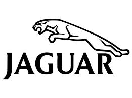Product Jaguar Decal 2031 Self Adhesive Vinyl Sticker Decal
