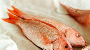 Red Snapper Healthy Recipes