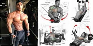 what s the best upper chest workout