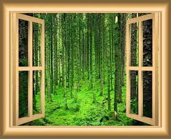3d Forest Wall Decals Nature Window Peel And Stick Mural 18 X22 Contemporary Wall Decals By Vwaq Vinyl Wall Art Quotes And Prints
