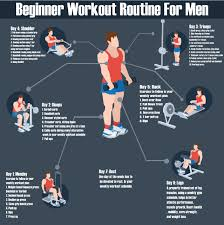 weekly beginner workout routine for men