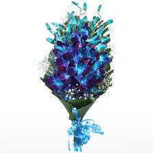 vibrant blue orchids bouquet free
