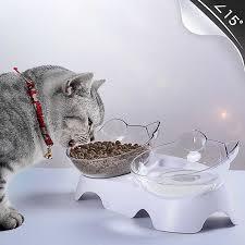 pet cat bowl dual use transpa bowls