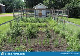 Vegetable Garden With A Fence And Chicken Coop Stock Photo Image Of Late Front 179081828