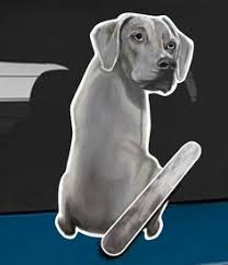 80 Wagging Wiper Decal Stickers Ideas Body Stickers Dogs Wagtail