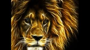 أسود ونمور متوحشة تأكل الاسماك Lions Eat Fish Youtube