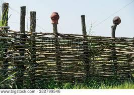 Fence Wicker Vine Image Photo Free Trial Bigstock