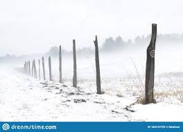 Misty Snowy Morning In A Field Featuring Rustic Wood Fence Posts Stock Image Image Of Misty Landscape 166410799