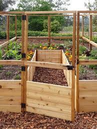 8 Raised Cedar Garden Bed With Deer Fence Diy Raised Garden Garden Bed Layout Cedar Raised Garden Beds