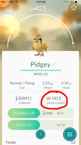 What's the most Pidgey candies you've had at once? : pokemongo