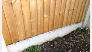 Hedgehogs And Garden Fences A Possible Solution Nurturing Nature
