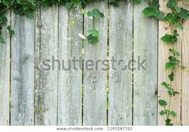 Old Rustic Wooden Fence Wooden Background Stock Photo Edit Now 1197297742