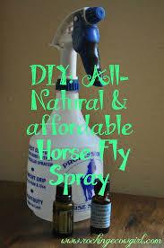 diy homemade fly spray
