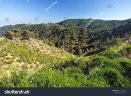 View Aspromonte National Park San Luca Stock Photo (Edit Now) 1331136611