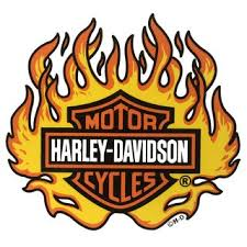 Harley Davidson Sticker Flame Window Decal 24 X22 Cm Windshield Xl 14 95