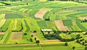 Алгоритм розробки проекту землеустрою щодо відведення земельної ділянки