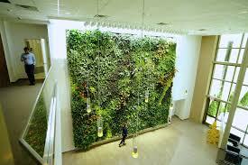 iff lobby living green wall garden