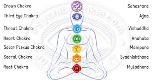 The 7 Chakras In The Human Body Receive And Radiate Life Force