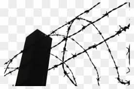 Fence Clipart Thorn Clip Art Barbed Wire Fence Png Download 920313 Pinclipart
