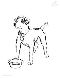 Kleurplaat Dieren Hond Kleurplaat Hond