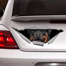 Decal Rottweiler Car Decal Vinyl Decal Car Decoration Etsy
