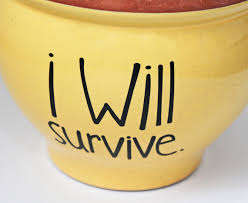 Diy Flower Pot Decal I Will Survive Spring Gift Idea Etsy In 2020 Spring Gift Ideas Diy Flower Pots Diy Flowers