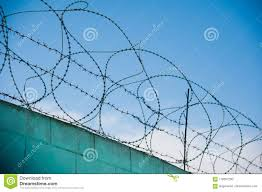 Barbed Fence Around Prison Walls Stock Photo Image Of Steel Danger 118557290