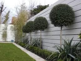 Make Your Garden Feature Small Garden Fence Modern Garden Garden Fence