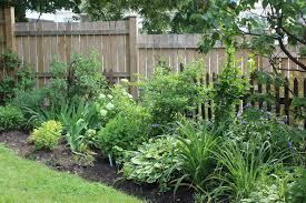 Border Shrubs Along Fence Google Search Landscaping Shrubs Fence Landscaping Garden Shrubs