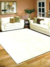 odd shaped rugs savethefrogs2 com