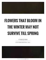 flowers that bloom in the winter not survive till spring